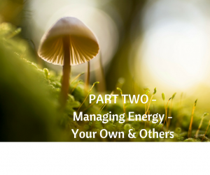 Managing Energy - Your Own & Others PART TWO